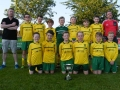 Ballingarry AFC Under 12 Division 2 Winners 2015-16