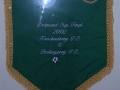 Cup final pennant 2002