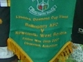 Ballingarry pennant from 2007 final