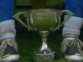 The Division 1 League Cup trophy