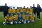 Ballingarry AFC U12 Girls squad 2016/17
