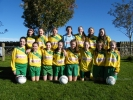 Ballingarry AFC U14 Girls Squad 2016/17