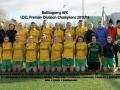 Ballingarry AFC Ladies LDLL Premier Division Champions 2017-18