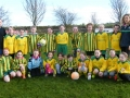 Ballingarry AFC Under 10 Girls squad 2016/17