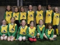 Ballingarry AFC Under 8 Girls Squad 2017-18