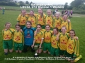 Ballingarry AFC LDS/GL U12 Girls Division 1 winners 2015/16