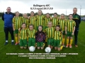 Girls U13 team 2017/18