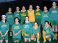 Ballingarry AFC Under 14 Girls Team - Shield finalists 2005.