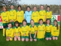 Ballingarry AFC U10 Girls 2013/14.