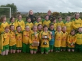 Ballingarry AFC LDS/GL U12 Div 1 Winners 2012-13