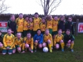 Ballingarry AFC U12 Girls 2013-14