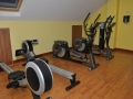 Steppers and Rowing machines