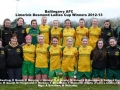 Ladies Desmond Cup Winners 2012-13