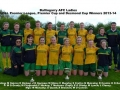 Ballingarry AFC Ladies - Treble winners 2013-14