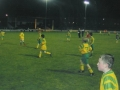 The Ballingarry teams entertain the crowd at half time.