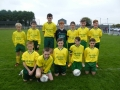Ballingarry team that were beaten by Listowel Celtic in the U14 National Cup