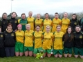 Ballingarry AFC Ladies Desmond Cup Winners 2012/13