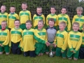 Ballingarry AFC Under 10 Division 1 winners 2012/13