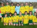 Ballingarry AFC U10 girls team 2013/14