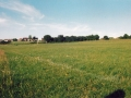 Temporary Home: While the pitch was being improved, the club played its matches on this pitch during season 1996/97. The field was owned by Dineens and situated at the rear of Ballingarry National School.