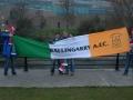 Ireland v Austria, Aviva Stadium WCQ 2014