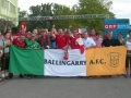 Austria v Ireland, Vienna, 10-9-13 WCQ 2014
