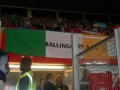 The flag hands proudly in the Ernst Happel Stadium
