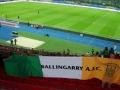 The flag in the Ernst Happel Stadium, Vienna for Austria v Ireland WCQ 10-9-13