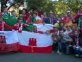 The flag at the Aviva Stadium vs Gibraltar 11-10-14