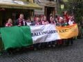 The Flag at the Aviva Stadium Ireland v Poland Euro 2016 Qualifier 29/3/2015