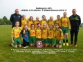 Ballingarry AFC U12 Girls Division 1 Shield Winners 2016-17