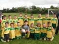 Ballingarry AFC Under 10 B team 2013/14