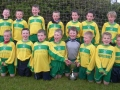 Ballingarry AFC Under 10 Division 1 Champions 2012/13