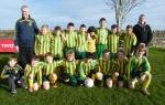 Ballingarry AFC Under 12 B squad 2015/16
