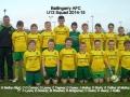 Ballingarry AFC Under 13 squad 2014/15