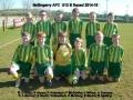 Ballingarry AFC Under 12B squad 2014/15