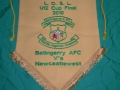 Cup final pennant