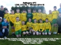 Ballingarry AFC Under 12 Division 1 winners 2015/15