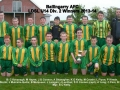 Ballingarry AFC Under 14 Division 2 winners 2013/14