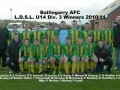 Ballingarry AFC Under 14 Division 3 winners 2010/11