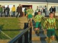 Darren Alymer and Kevin Moynihan lead Ballingarry onto the pitch.