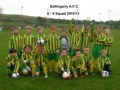 Ballingarry AFC Under 8 squad 2010/11