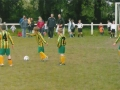 Ballingarry kick off the game.