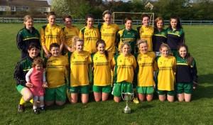 Ballingarry AFC Ladies - Premier Division League Cup Winners 2013/14